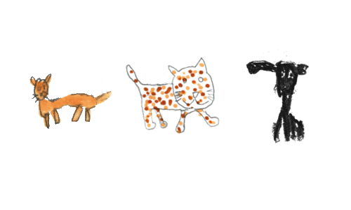 Magnétisme animaux